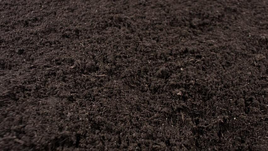Image gallery soil texture for Black garden soil