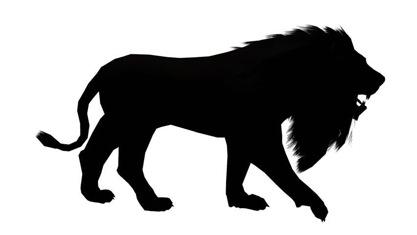 Lion Run Endangered Wild Animal Wildlife Running Sketch Silhouette Cg 02516 Stock Footage Video