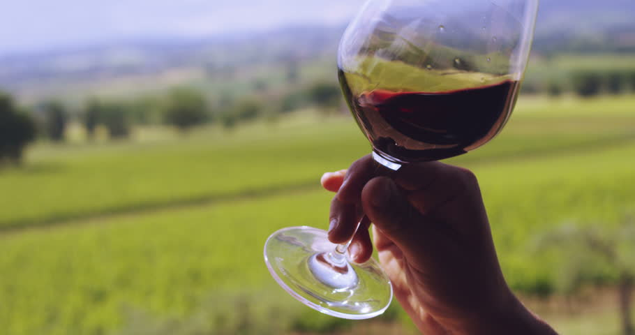 Slow motion of middle aged sommelier smells red wine poured in transparent glass on a scenic vineyard panoramic background (close up) | Shutterstock HD Video #10370417