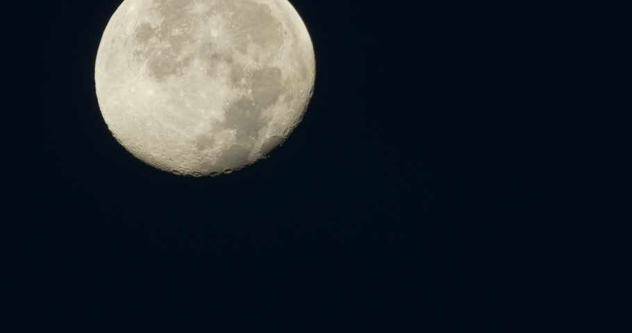 Night moon and moonbeam in sea stock footage video for Plante 94 pourcent