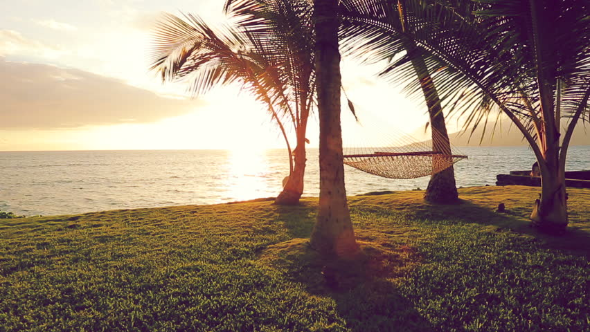 Romantic Young Couple Relaxing In Tropical Hammock At