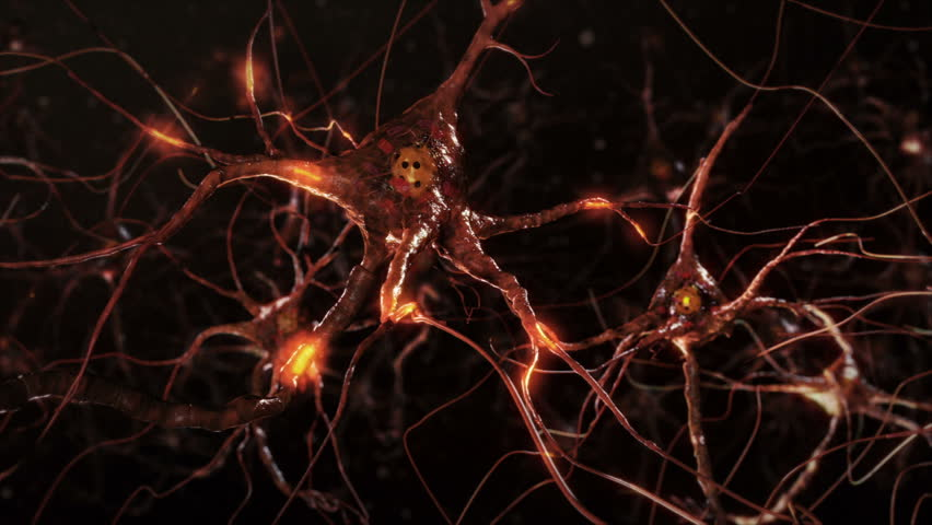 Flying across a neuron network with electric impulses. Synapse. Brain. Warm colors. Dolly. More options in my portfolio. | Shutterstock HD Video #11748794