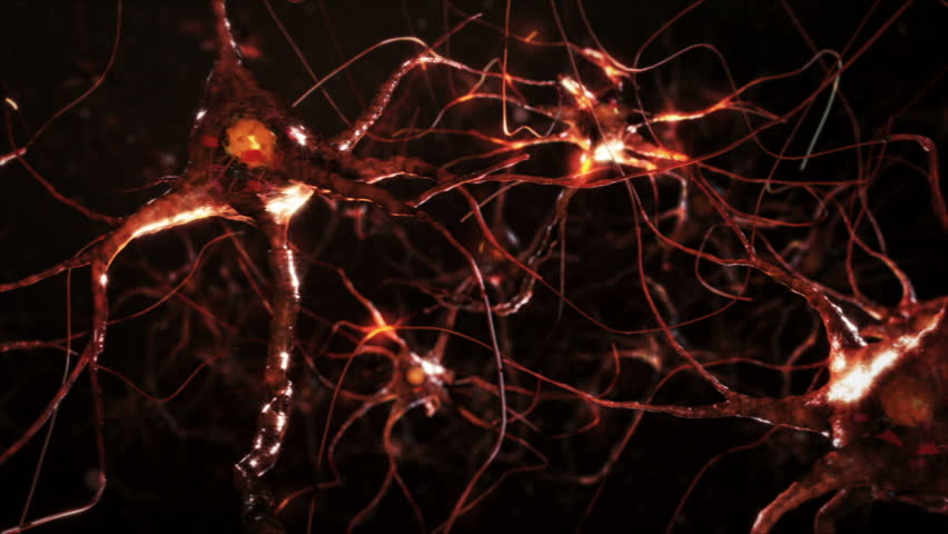 Neuron cells. Network connections. Orange. Synapse. Brain. 2 videos in 1 file. Flying across a neural network, electric impulses passes by it. Zoom out and dolly. More options in my portfolio. | Shutterstock HD Video #11748797
