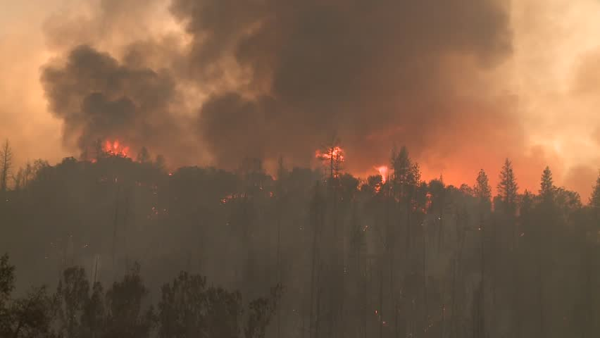 FOREST FIRES OF NORTHERN CALIFORNIA SUMMER 2015 WILD FIRES SMOKE FLAMES FIREFIGHTER CREWS BATTLE THE FIRES DURING THE DRY DROUGHT CONDITIONS HD HIGH DEFINITION STOCK VIDEO FOOTAGE CLIP 1920X1080 | Shutterstock HD Video #11914049