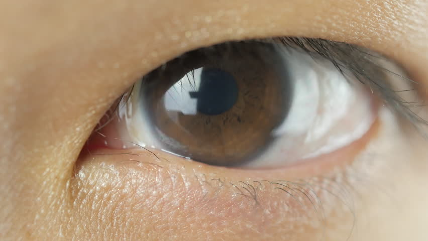 big close up of asian womans left eye with contact lens