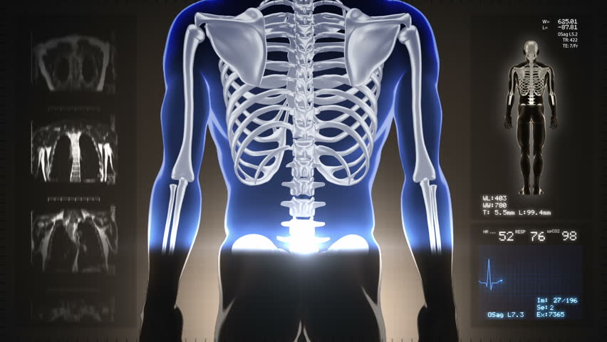 Detailed human body turning. Scan. Loopable. Blue and white. Brown background. Highly detailed close up of human body and skeleton turning. MRI images and heart rate data also included.