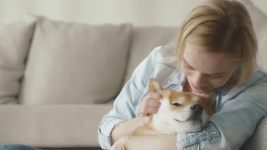 Happy blond woman is playing with pet dog at home next to a sofa. Shot on RED Cinema Camera in 4K (UHD).