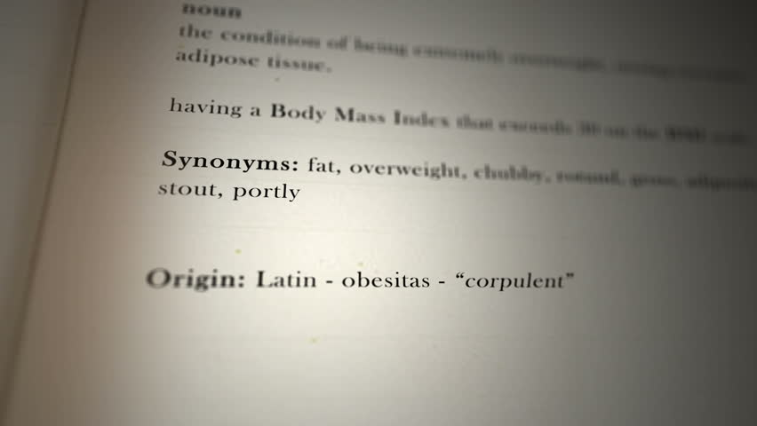 Synonyms for obesity