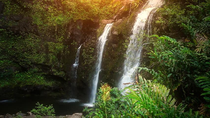 Waterfall in Tropical Paradise HD Loop