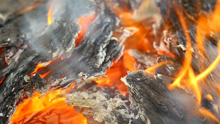 puntland charcoal burning Where is punt proposed locations goes by the name puntland) (identified by charcoal) and obsidian (a volcanic glass), neither of which occurs in egypt.