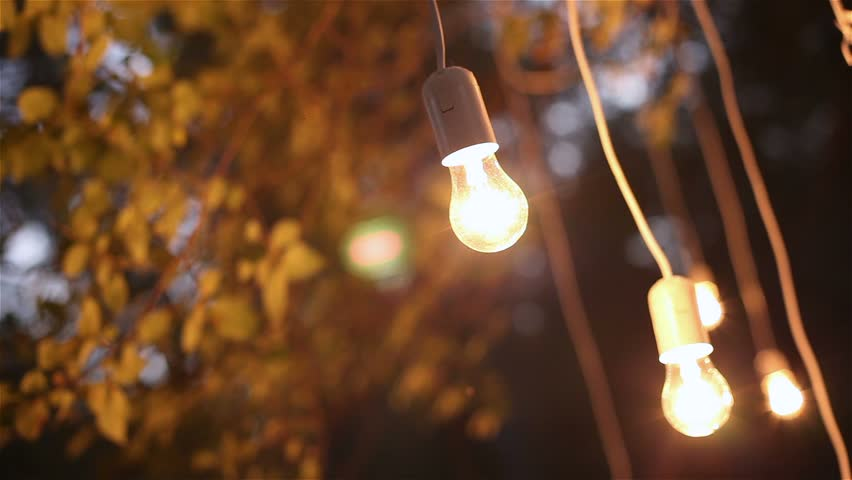 Decorative antique edison style filament light bulbs hanging in the woods,  glass lantern, lamp