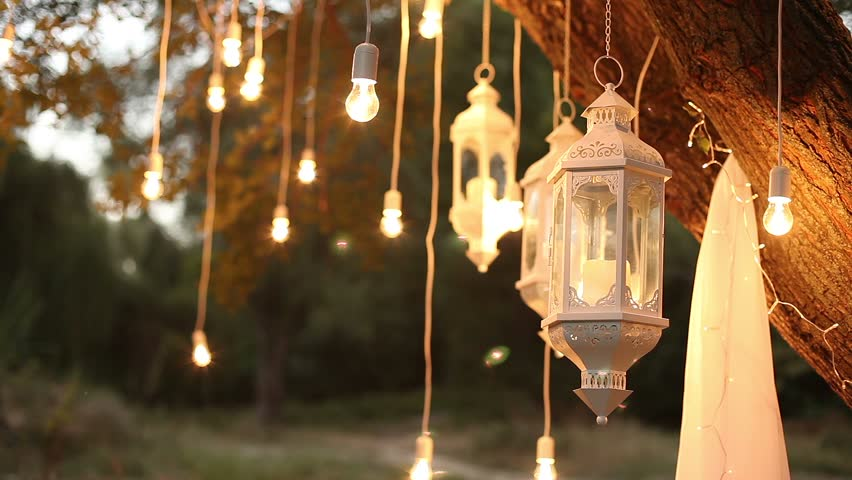 Decorative antique style filament light bulbs hanging in the woods, glass  lantern, lamp decoration