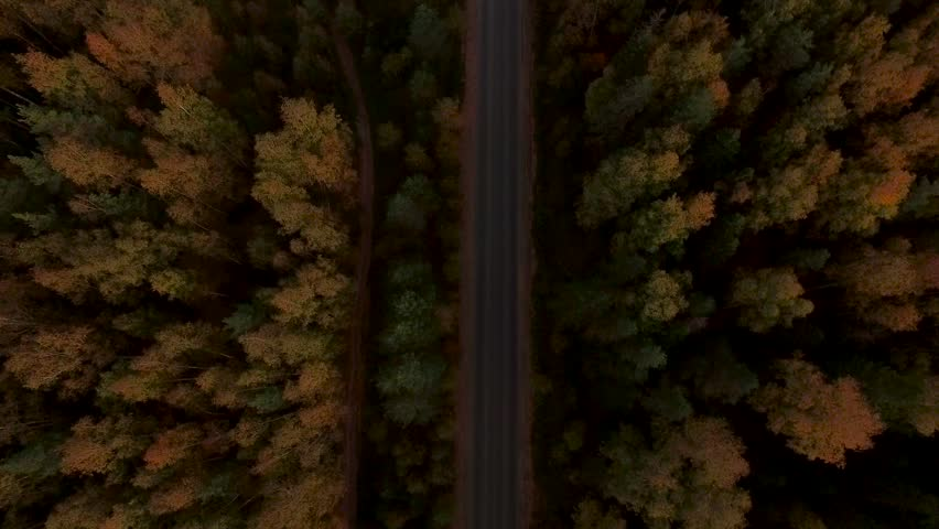 Aerial Flight over the road between fields. Autumn colors.   Shutterstock Video #19679488