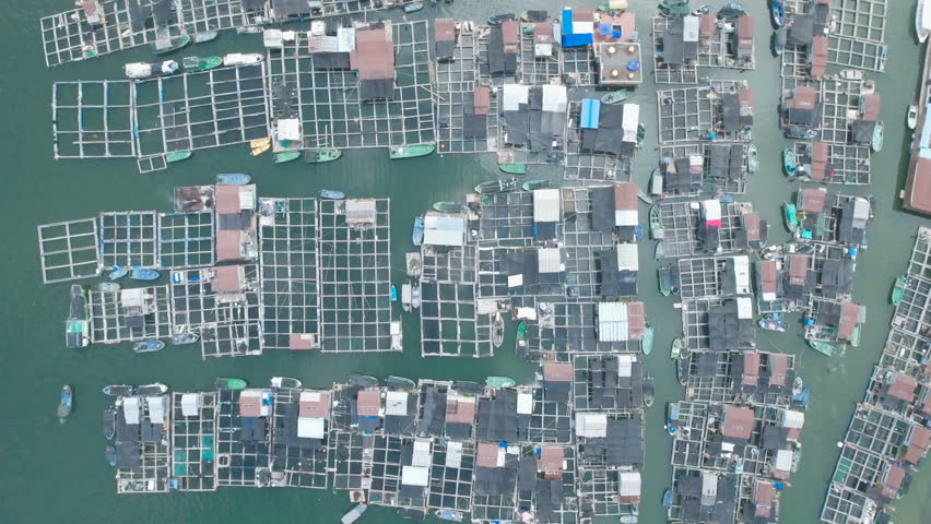 Aerial view of a local floating fishing community on Hainan island in the South China Sea. | Shutterstock HD Video #19837597