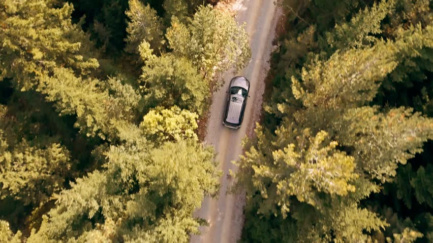 Slow Motion Footage Of Car Driving Through Forest Road Drone Travel Countryside Adventure Tree Autumn Nature Scenic Green Trip | Shutterstock HD Video #21762760