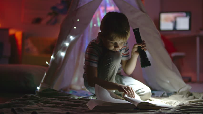 Little boy with flashlight sitting in his room near teepee decorated with fairy lights and looking at book | Shutterstock HD Video #22413283