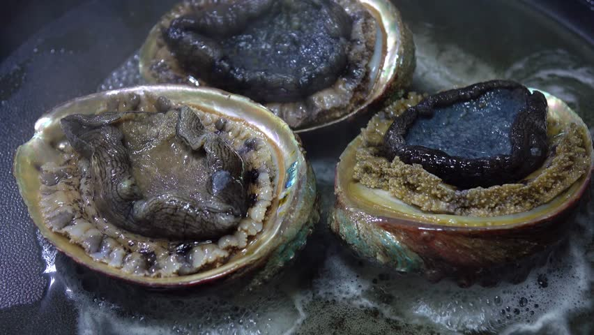 Header of Abalone