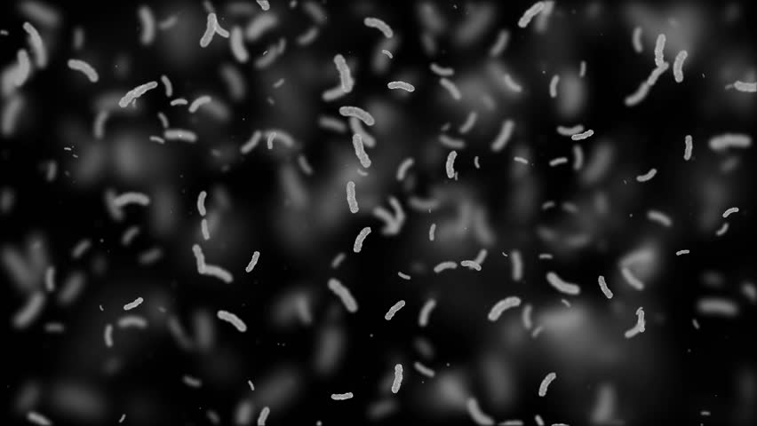 3d render virus of bacillus or microorganism under microscope. Macro germ cells background loop sequence. Rapid multiplication of bacteria. Infection and microbe. Scientific microbiology.