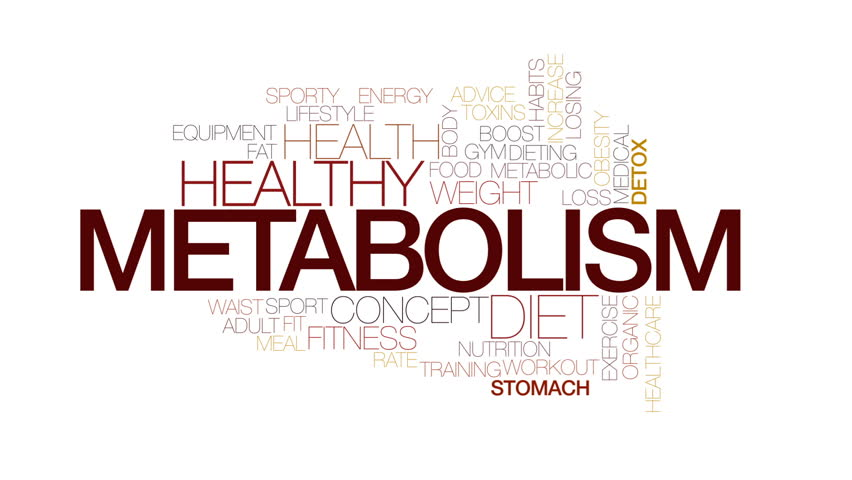 Metabolism animated word cloud, text design animation. Kinetic typography. | Shutterstock HD Video #23516383