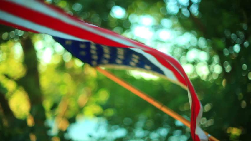 Header of American flag