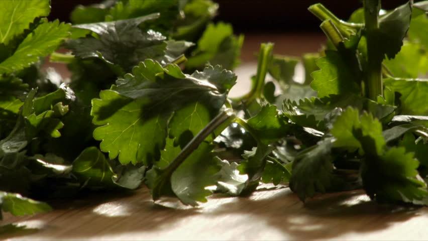A chef chops parsley (cilantro)