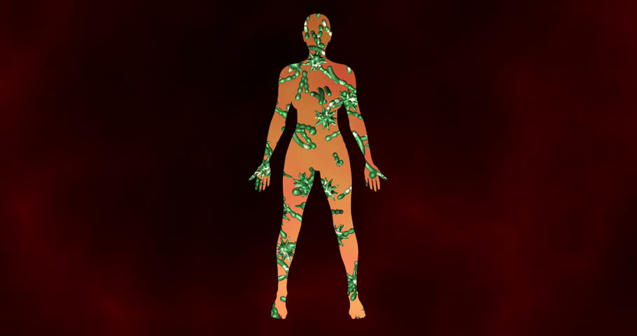 Microbiome bacteria, viruses, microbes inside female body. 3d animation