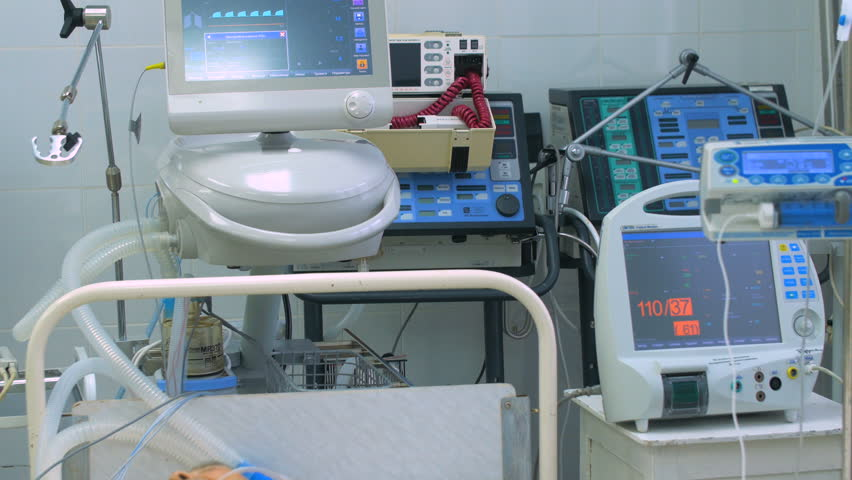 Header of Life support