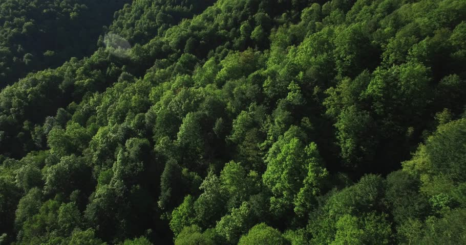 Aerial view of green russian mountains   Shutterstock HD Video #27981925