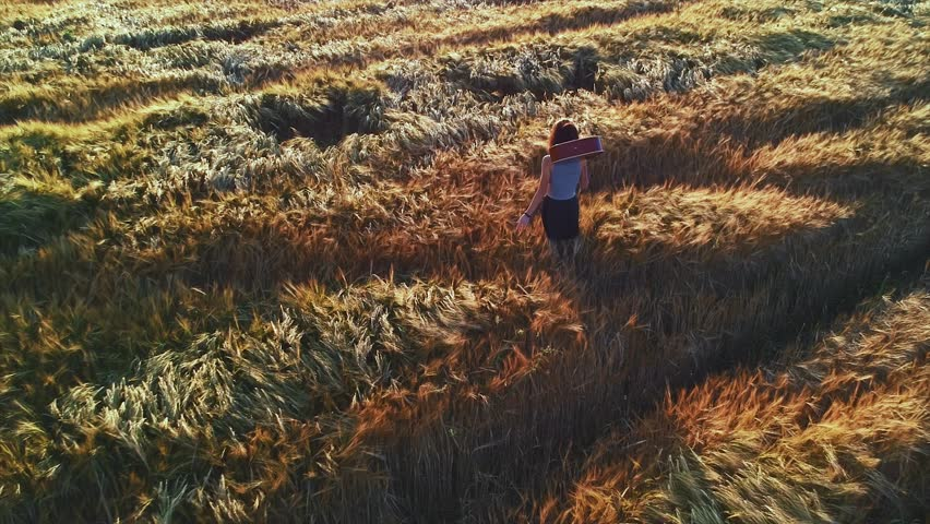 Musician girl walking with a guitar at wheat field