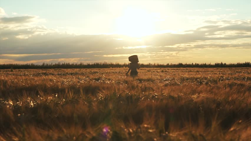 Woman silhouette walking with a guitar in field