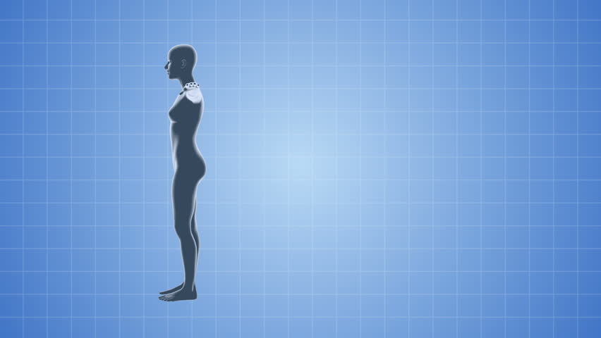 A 3D female body medical animation seamless looping background with copy space.