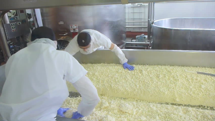 SEATTLE, WASHINGTON - CIRCA 2013: Two people working and making cheese with