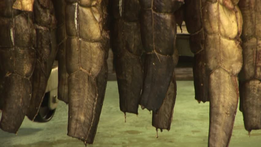 Fish processing plant. Fish of cold (hot) smoked