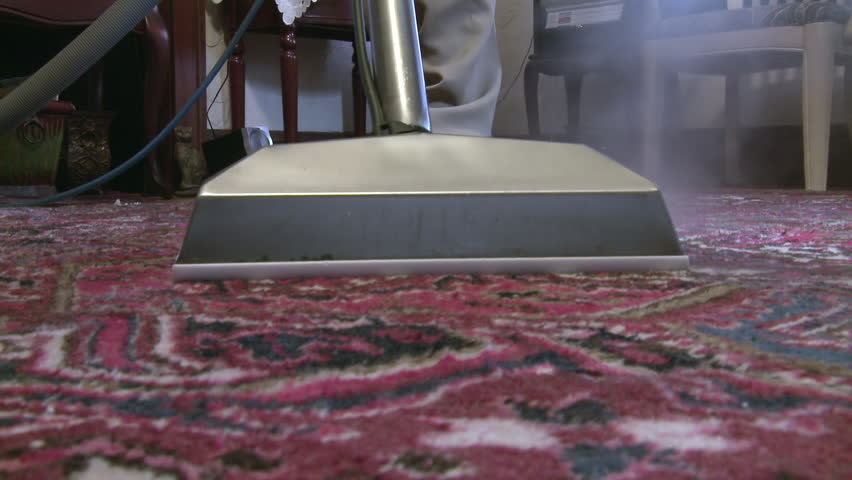 Image result for hd carpet cleaning