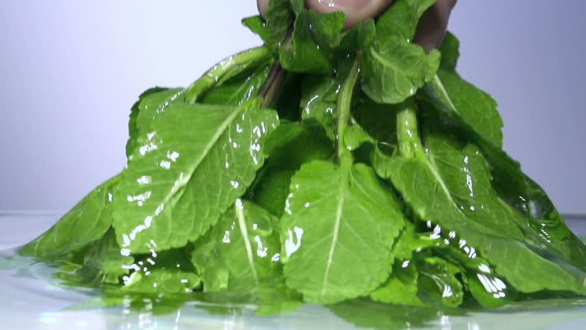 Fresh lettuce salad falls under water with a splash.
