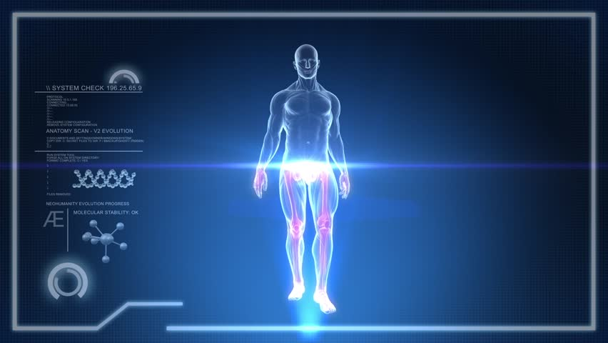 Human Anatomy WALKING with Touch Screen Scan in 3D x-ray - LOOP #3985957