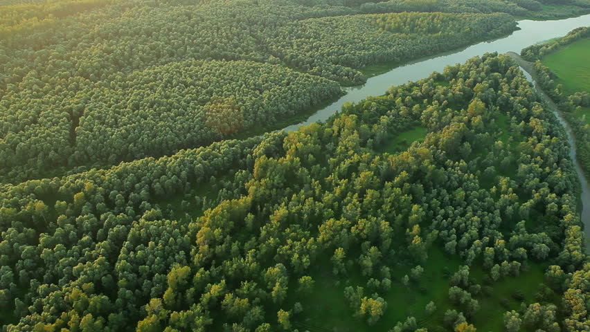 Aerial View. Flying over the beautiful mountain River and beautiful forest. Aerial camera shot. Altai, Siberia.