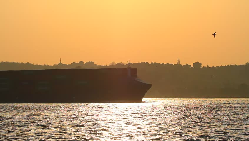 Large cargo ship sailing past the city in Istanbul, Turkey. Container ship