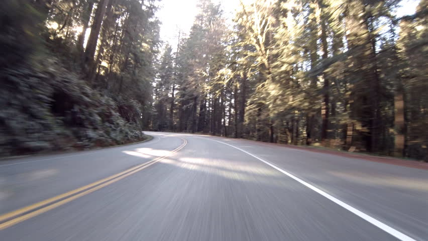Driving view through Redwood forest on Highway 199 in California pov