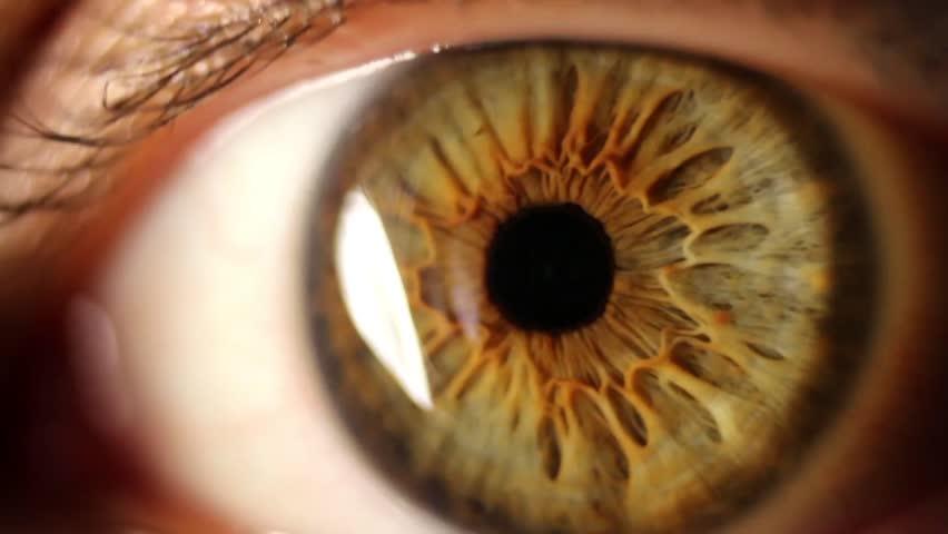 Macro shot of woman's eye blinking  | Shutterstock HD Video #4608614