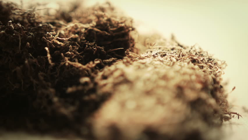 Hand Rolling Tobacco.