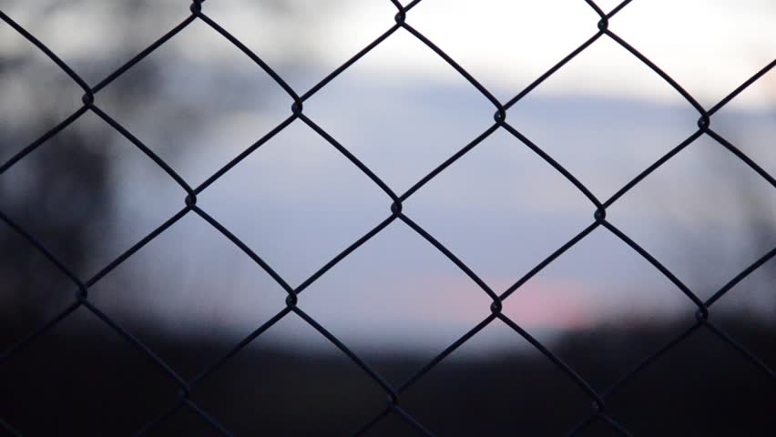 Metal fence (pound). The camera floats through the fence