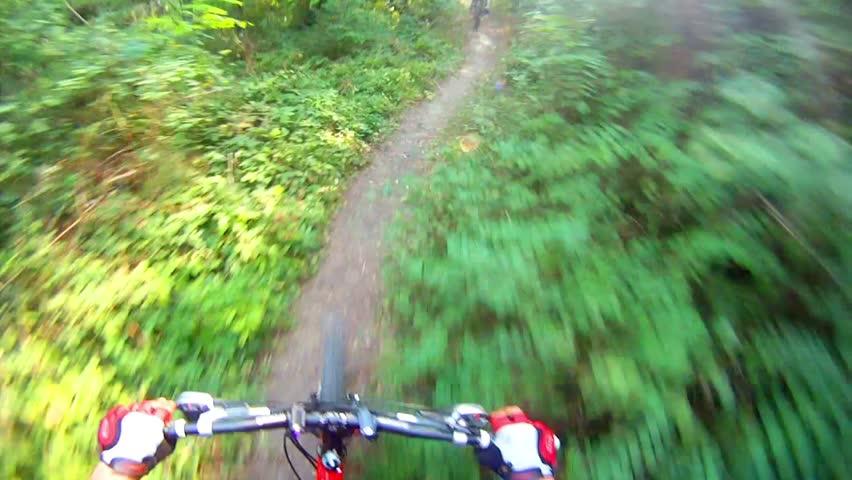 HD: Downhill on mountain bike - Stock Video. Mountain Bike from Rider's POV