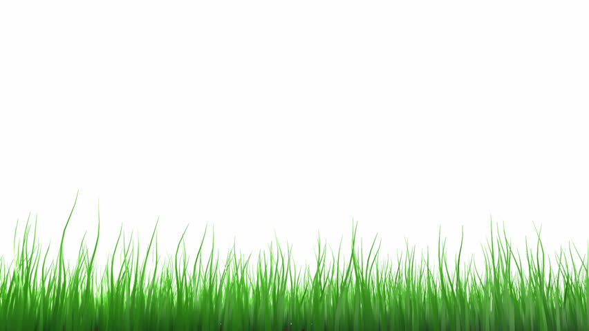 animated grass stock footage video 40085