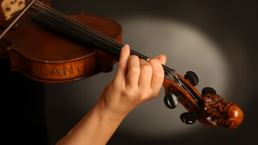 how to become a professional musician in an orchestra
