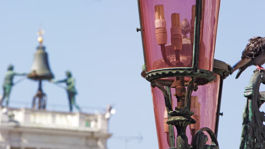 A panning shot of birds on a lamp post