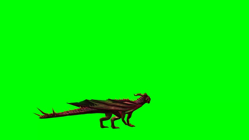 Thanos Home Green Screen Hd 60 Fps: CAT WALK 4 Short Sequence Shade Of Cat,walks From Left To