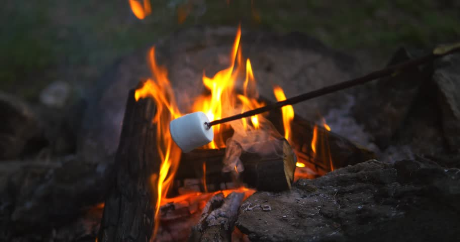 Image result for stock photos roasting marshmallows