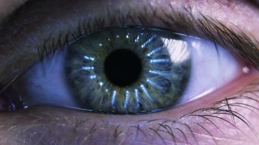 Eye iris and pupil macro. Reflected light rays into the human eye