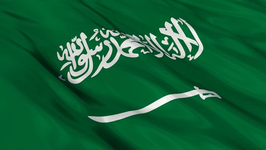 Resultado de imagem para saudi arabia flag 3D